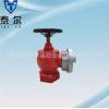 厂家供应泰尔品牌消防器材国标SNZ65室内消火栓