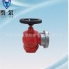 厂家供应泰尔品牌消防器材国标SN65室内消火栓